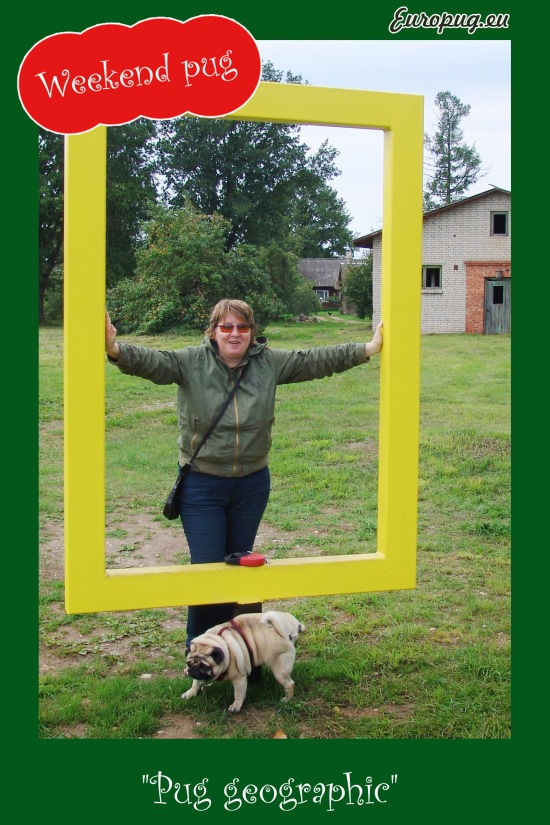 """Europug. """"Pug geographic"""". Vallis understanding about the importance of the moment"""