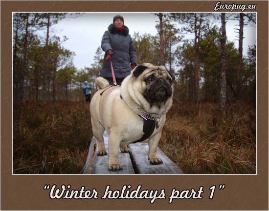 Europug winter vacation (4)