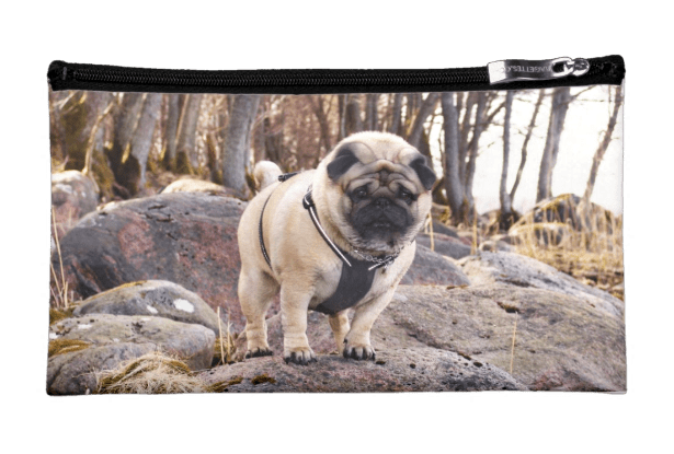 Euro Pug On The Stones Medium Cosmetic Bag