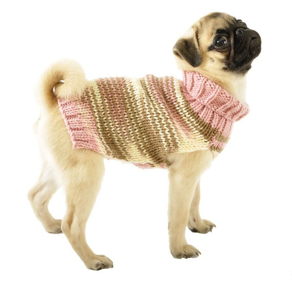 Knitting Pattern Dog Coat Pug : Knitted Dog Sweater   Pug Store