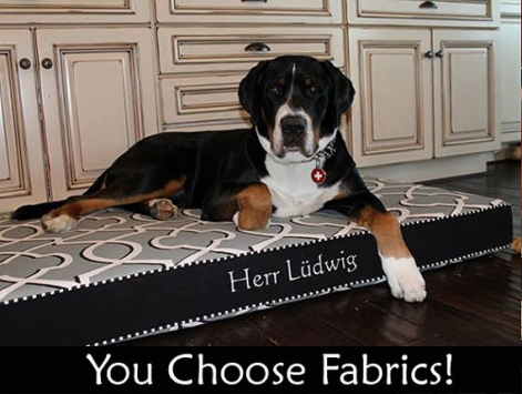 XL Dog Bed with Foam