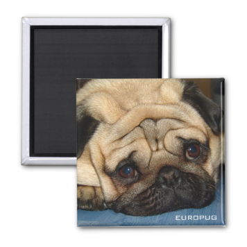 Europug Face Photo Magnet