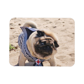 Europug Funny Sailor 3