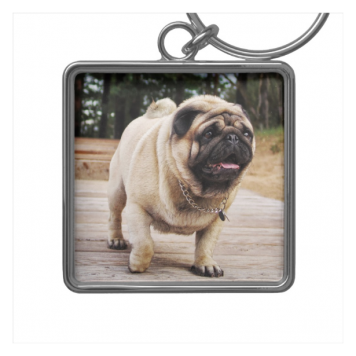 Lion Pug On The Stairs Premium Square Keychain