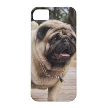 Lion Pug On The Stairs iPhone 5/5S case