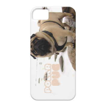 Polar Euro Pug iPhone 5/5S case