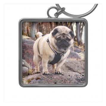 Euro Pug On The Stones Premium Square Keychain