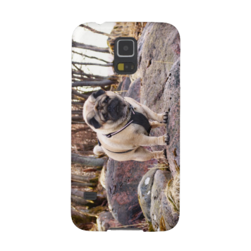 Euro Pug On The Stones Samsung Galaxy S5 case