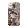 Pug On The Stones Samsung Galaxy S5 case