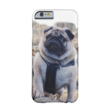 Euro Pug On The Stone iPhone 6 case