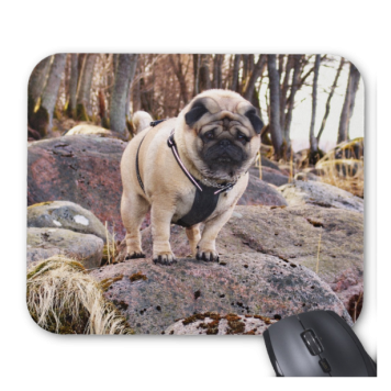 Euro Pug On The Stones Mousepad