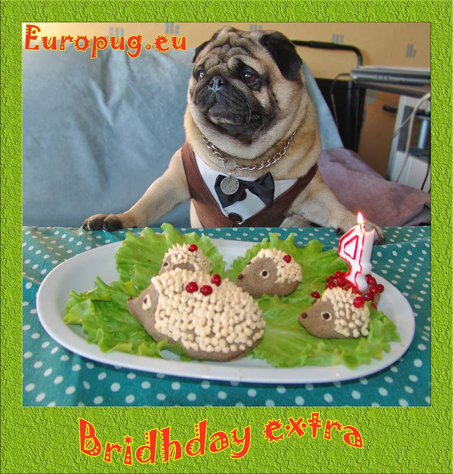 Europug. Bridhday extra, Four years old