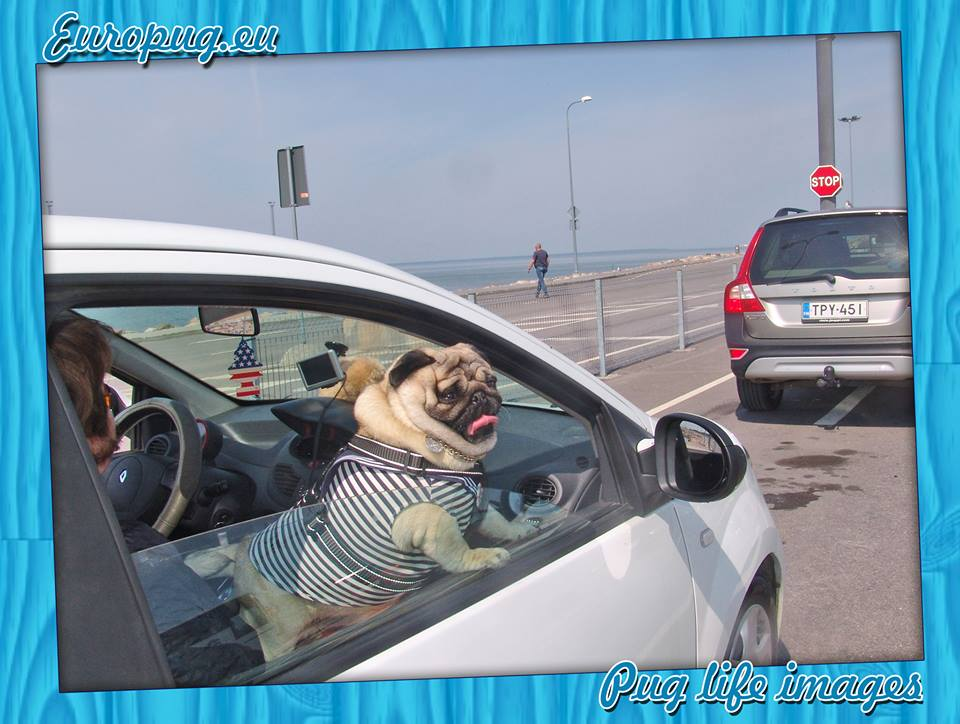 """Europug. """"Waiting for ferry"""""""