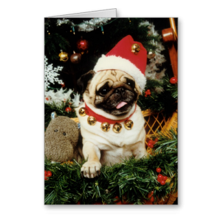 Pug Dog Santa Christmas Card