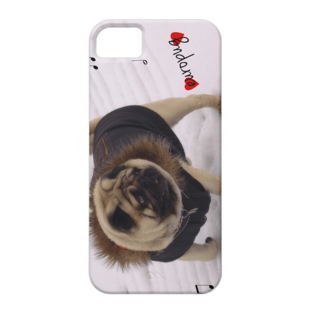 Winter Melodia iPhone 5/5S case