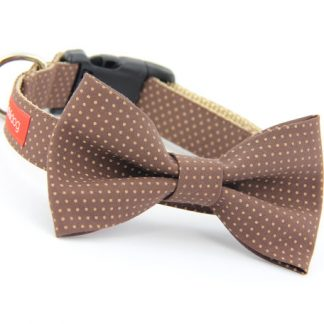 Brown Polka Dot Bow Tie Dog Collar