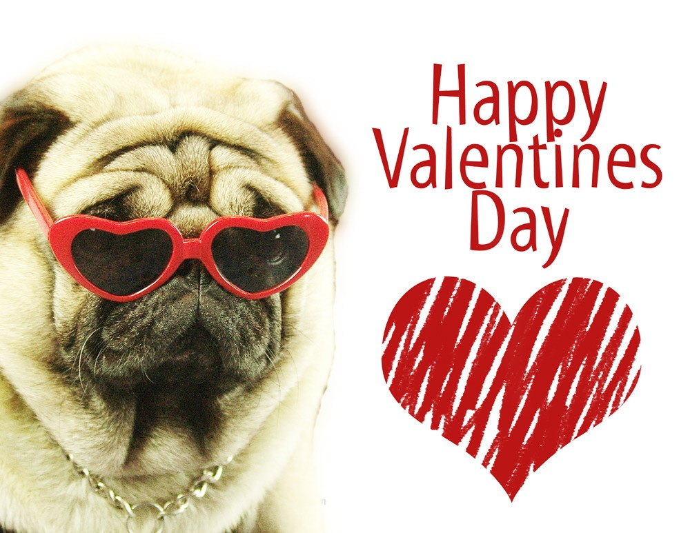 Valli wished everyone a Happy Valentine's Day!