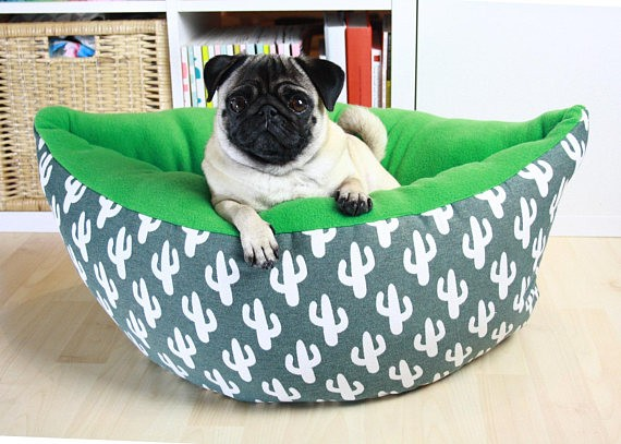 Cactus Pet Bed