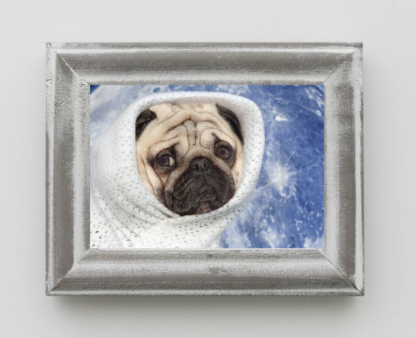 Pug Dog Space Print | Alien Planet Pug